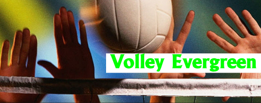 Volley Evergreen